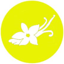 Semena konoplje Vanilla Kush